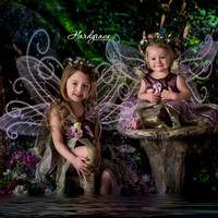 Enchanted Fairies